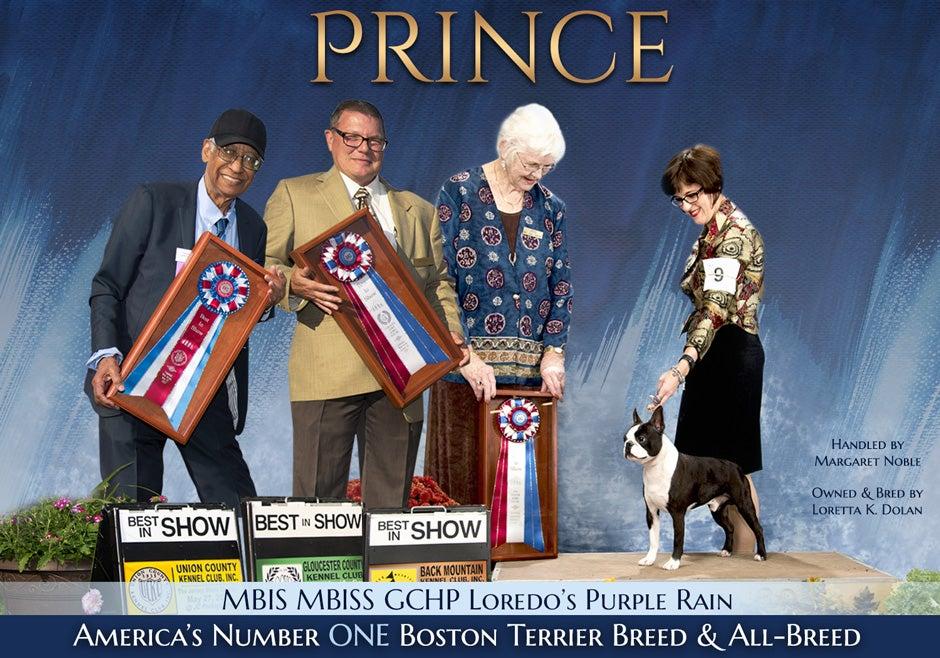 121218_Prince_wwg
